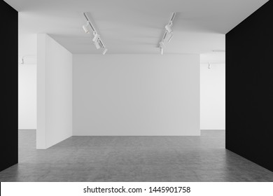 Interior of empty gallery with white and black walls, concrete floor and ceiling lamps. Concept of advertising and marketing. 3d rendering, mock up