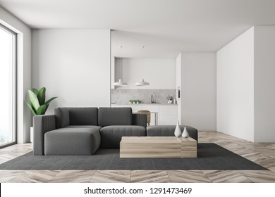 Interior of white living room with wooden floor, gray sofa standing on carpet near coffee table and kitchen in the background. 3d rendering