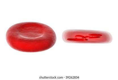 internal blood cells
