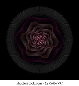 Intricate pink, white and purple abstract spiral rose (3D illustration, black background)