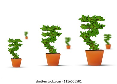 Investment money growing, Indian rupee symbol
