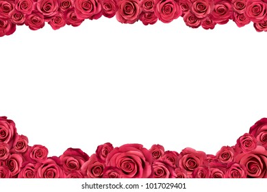 Irregular frame made of pink roses. Isolated on white.