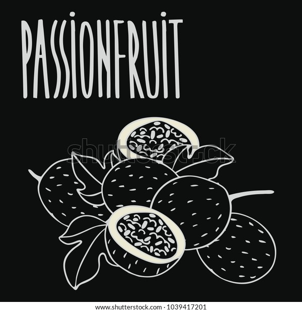 Isolate ripe passion fruit as chalk on blackboard. Close up clipart in chalkboard style. Hand drawn icon. Raster version of illustration