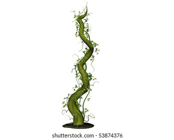 Isolated 3D Illustration of a bean stalk