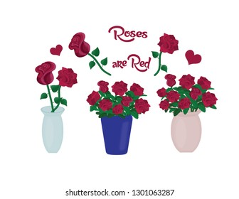 "Isolated beautiful red roses in different vases with the words ""Roses are Red"" in script."