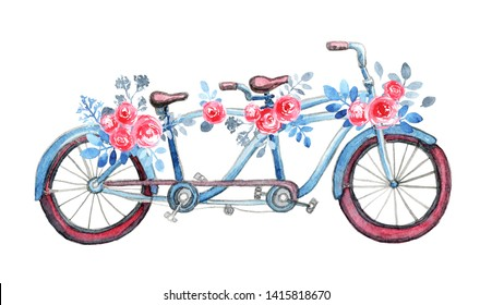 Isolated blue tandem bicycle with purple weels and bouquets. Pink rose flowers, blue leaves.