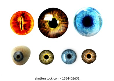 isolated colorful eyes white background