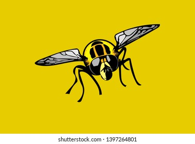Isolated colour Illustration of Footballer hoverfly head-on on gold background.