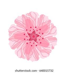 Isolated flower sakura cartoon pink white stock vector royalty free isolated flower of sakura cartoon pink and white blossom of japanese cherry tree raster mightylinksfo