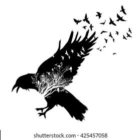 Isolated flying down Raven double exposure. Trees and birds silhouettes on background
