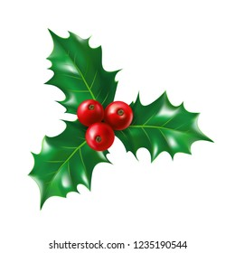 Isolated holly berry with leaves. Ilex berries on sprig with leaf. Plant for new year and merry christmas decoration or mistletoe branch or twig with fruits. Nature and botany, celebration theme