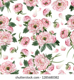 Isolated on white background seamless pattern with botany pink peonies for your design, wallpaper, textile, wrapping paper and other.