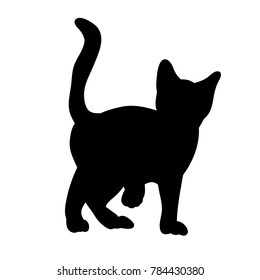 isolated silhouette cat standing