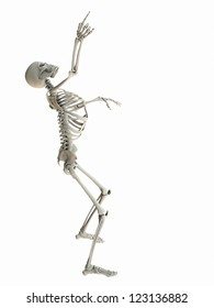 Isolated skeleton standing looking up pointing at white copy space.