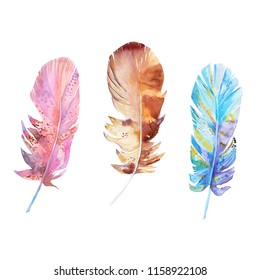 Isolated watercolor feathers. Hand painted colorful feathers. Perfect for textile