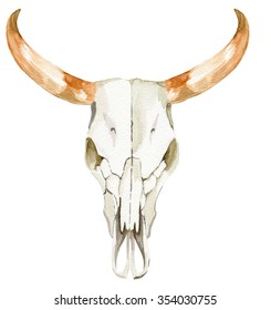 isolated watercolor illustration of cow scull with beautiful swirled antlers and detailed facial bone structure.