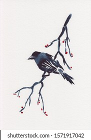 Isolated watercolor painting of Chinese Ink style bird sitting on branch with red berries. Stock illustration hand painted watercolor picture. Great for Asia style postcards or decoration.