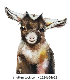 Isolated watercolour painting of baby goat on white background