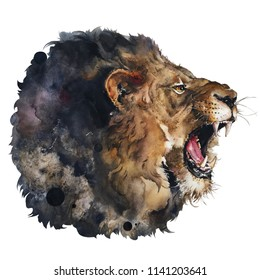 Isolated watercolour painting of lion on white black ground