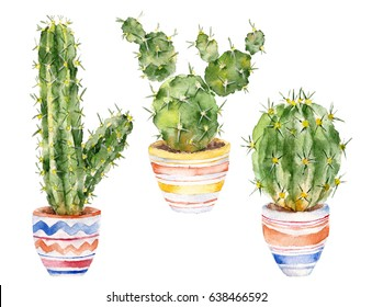 Isolated white background with cactus, peyote. Watercolor illustration.