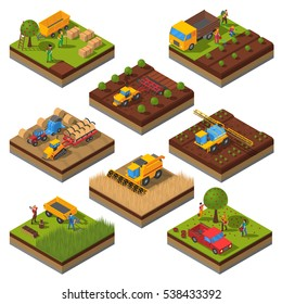 Isometric set with isolated plates of fields and agricultural machines harvesting and people cropping  illustration