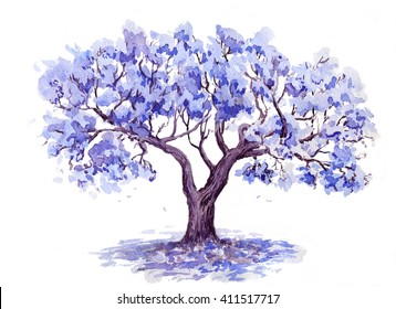 The Jacaranda Trees.Watercolor sketch