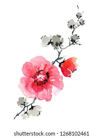 Japanese flowers watercolor illustration. Hand drawn nature chinese painting art on white background. Red poppy and grey blossom on black branch.