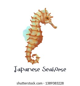 Japanese Sea Horse Animal Realistic Illustration
