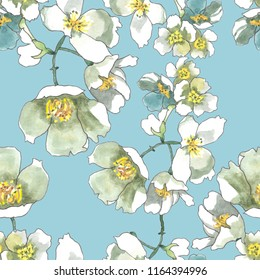 jasmine flowers branches watercolor on sky blue background seamless pattern for fabrics, paper,wallpaper