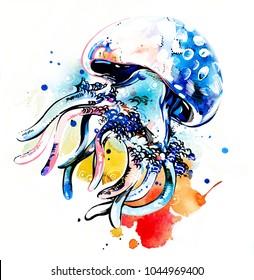 Jelly underwater wildlife