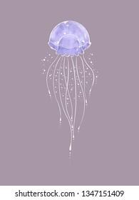 Jellyfish illustration, digital art.