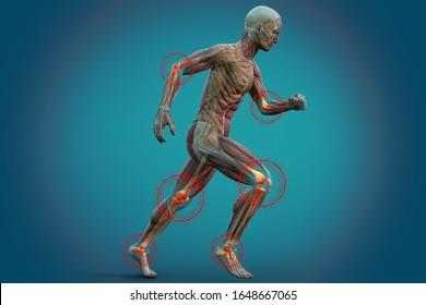 人間の関節痛、解剖学的な視覚。3Dイラスト。
