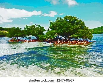 Jost Van Dyke BVI Mangrove watercolor