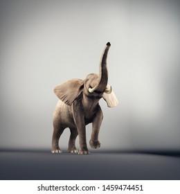 Joyful elephant in a studio. 3d render