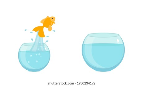 Jumping to the highest level - goldfish jumping in a bigger bowl