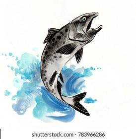 Jumping salmon. Watercolor sketch