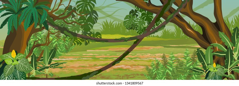 Jungle. A tropical forest. Rainforests of Amazonia. Tree, epiphytic ferns, creepers, banana trees, flowers and monsteras. Realistic raster Landscape