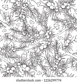 juniper's berries and branches. seamless pattern with evergreen plants.  Use for background, wallpaper, cards, invitations, fabric