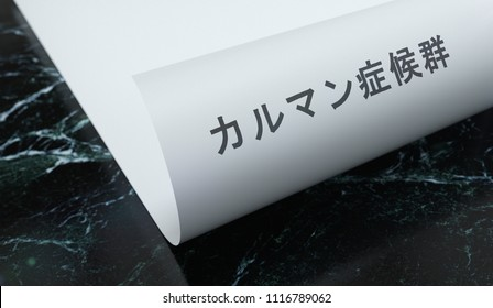 Kallmann syndrome written on paper with marble. Medicine concept. Japanese language. 3D Illustration.