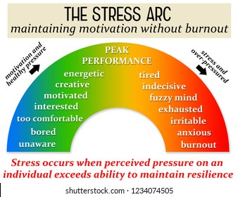 keeping stress levels healthy and avoiding burnout