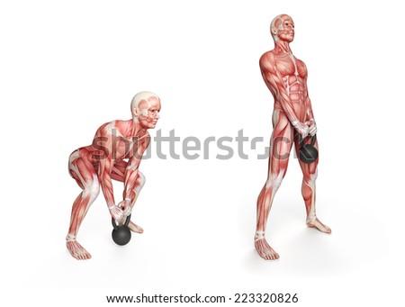 Kettlebell Exercise Deadlift Stock Illustration 223320826 Shutterstock