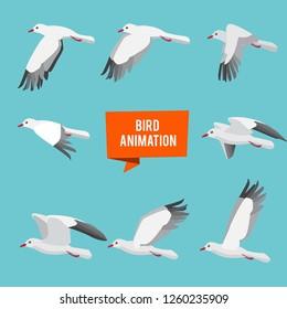 Key frames of animation flying bird