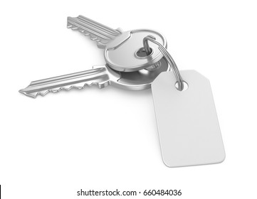 Keys with blank tag, 3d illustration isolated on white