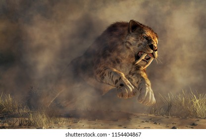 Kicking up a spray of dirt, a massive smilodon, a beast of fur and fang, leaps out of the murky mists. With its muscular frame, razor sharp claws, and long curved teeth, he's a killer. 3D Rendering
