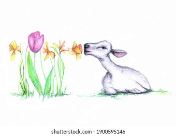 Kid Laying down and Sniffing Daffodil - Spring Easter Sketchy Drawing Decoration