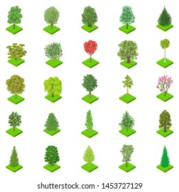 Kind of tree icons set. Isometric set of 25 kind of tree icons for web isolated on white background
