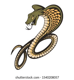 king cobra with hood. Snake Cobra is ready to hit with fangs and tongue. Viper snake. Mascot realistic King cobra illustration for a sport team.