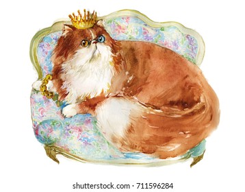 king red persian cat with crown lying on luxury sofa