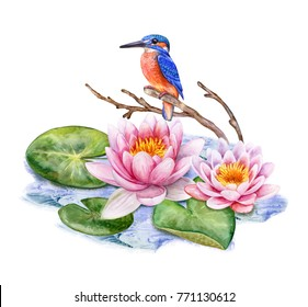 Kingfisher bird and pink Lotus. Water lilies isolated on white background. Watercolor. Illustration. Template. Picture. Handmade. Clip-Art