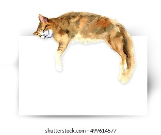 Kitten hanging over blank poster-board, you add the message. Animal silhouette watercolor sketch. Wildlife art illustration. Vintage graphic for fabric, postcard, greeting card, book
